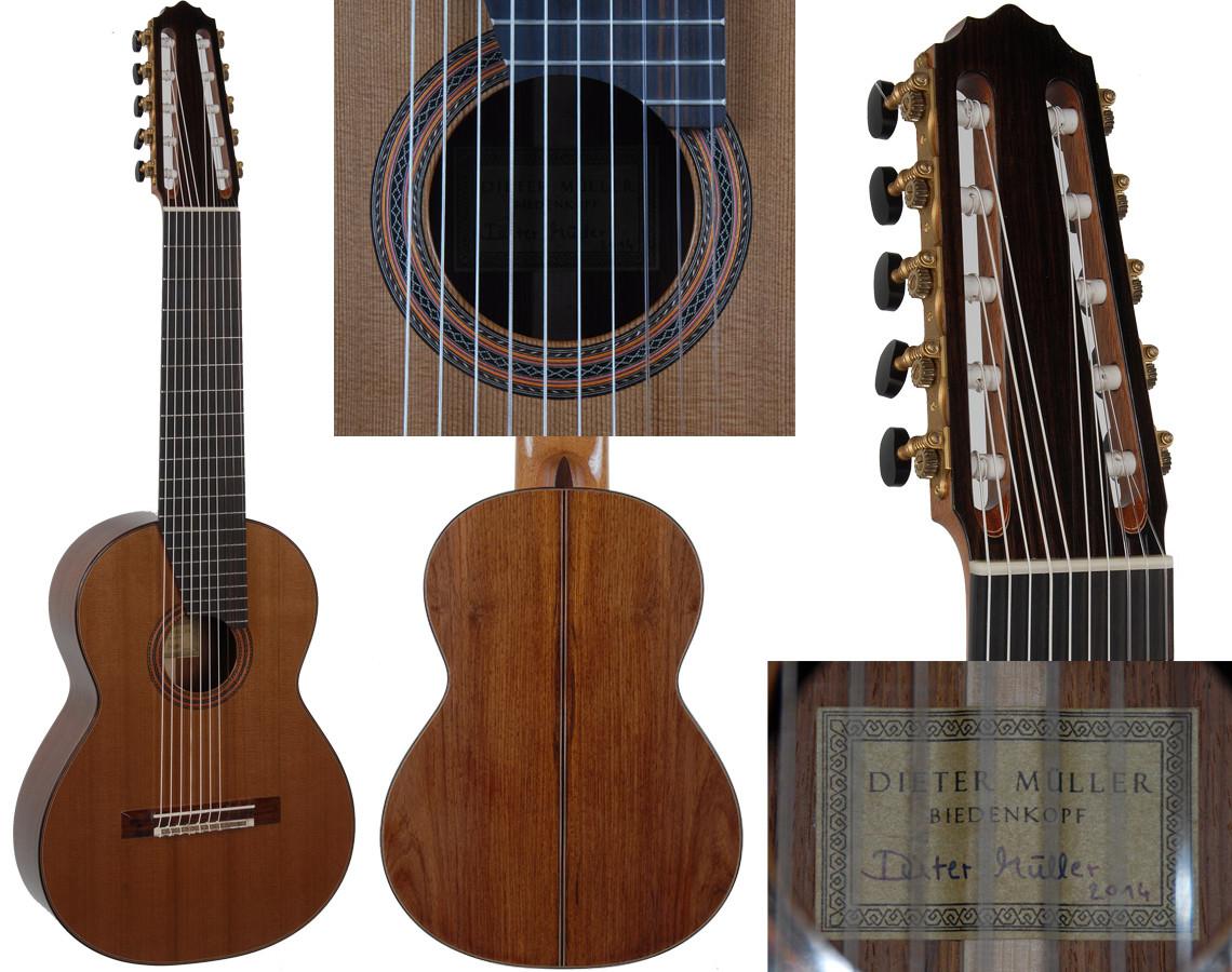 NEW Dieter Müller 10 string, Cedar/Double Top